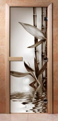 Стеклянная дверь для сауны - фотопечать А057