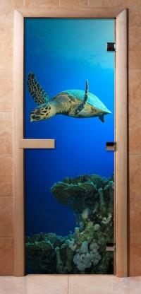 Стеклянная дверь для сауны - фотопечать А086