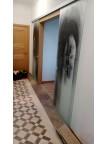 Раздвижная стеклянная дверь Аркада-2