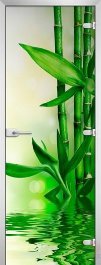 Дверь стеклянная Spa-03 матовое бесцветное