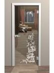 Стеклянная межкомнатная дверь Колибри - Стекло прозрачное