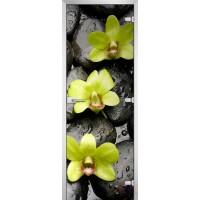 Дверь стеклянная Flowers-11 матовое бесцветное