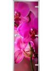 Стеклянная дверь Flowers-19 матовое бесцветное