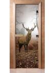 Стеклянная дверь для сауны - фотопечать А080