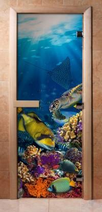 Стеклянная дверь для сауны - фотопечать А085