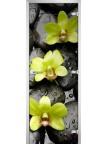 Стеклянная дверь Flowers-11 матовое бесцветное