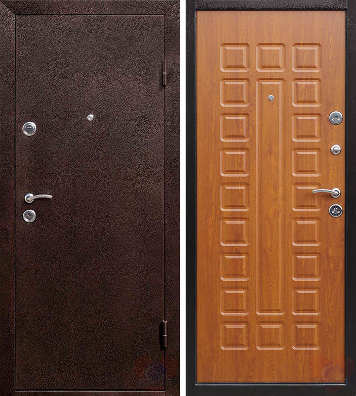 двери стальные входные 860