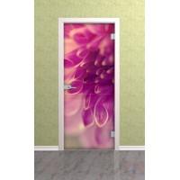 Дверь стеклянная межкомнатная Пион - Стекло прозрачное