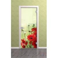 Дверь стеклянная межкомнатная Маки - Стекло прозрачное